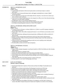 Digital Advertising Resume Digital Advertising Resume Samples Velvet Jobs 1