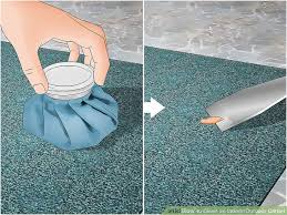image titled clean an indoor outdoor carpet step 5