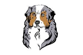 Free for commercial use no attribution required high quality images. Australian Shepherd Svg Cut File By Creative Fabrica Crafts Creative Fabrica