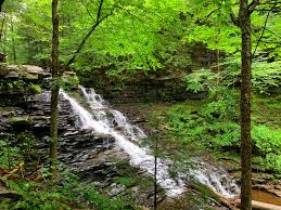 We did not find results for: Trip Report Ricketts Glen State Park In Pennsylvania Road Trip Tails
