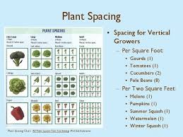 130 square foot gardening ideas in 2021