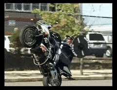 Stuntlife GIFs Search  Create Discover And Share Awesome GIFs On Bench Press Wheelie