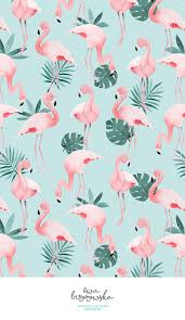 Flamingo Pattern Gorgeous Flamingo Textile Surface Pattern Design With Flamingos On Mint