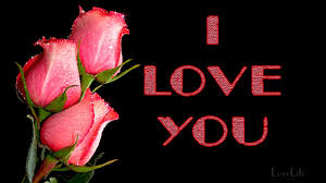 i love you a message of love with roses for someone special