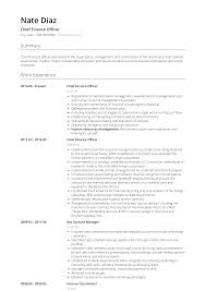 Chief Financial Officer Resumes Finance Officer Resume Samples Templates Visualcv