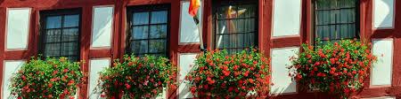 Best Window Caulk How To Properly Seal Maintain Exterior Windows Aaa Windows