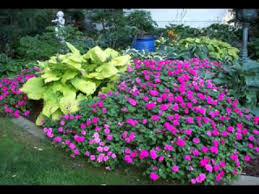 Small Picture Shade garden ideas YouTube