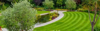 this report is the building block for the new garden and it should be reviewed in detail and agreed upon before landscaping begins
