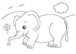 Baby Elephant Coloring Pages To Print Baby Elephant Coloring Page