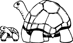 Small Picture Mother And Baby Tortoise Turtle Coloring Page Wecoloringpage