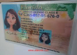 Status Driver Florida License Florida Status Driver Status License Driver Florida License