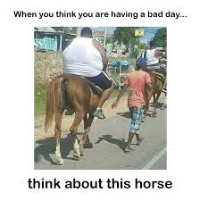 When you think you are having a bad day – meme | FunnyCrazyViral via Relatably.com