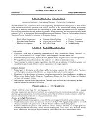 mcse resume samples entertainment executive resume example