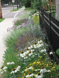 starting from scratch or how i learned a new gardening style in just 15 years midwest edition enewsletter
