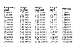 Baby Average Length Chart Unexpected Pregnancy Fetal Weight And Length Chart Child