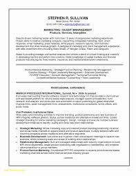 Sales Executive Resume Sample Download New 25 Resume Examples