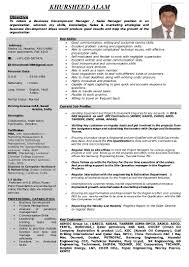 Oil And Gas Sales Resume Examples Business Development Manager Sales Manager Oil Gas 9