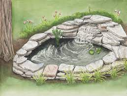 12 steps to building a small pond for