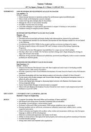 020 Sales Director Business Plan Template Ideas Day Manager