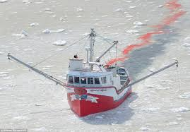 hunting vessel photographs and s shot from a helicopter show commercial fishermen slaughter the mammals
