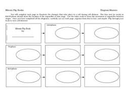 cell cycle flip book classy cell division worksheet 7th grade for your cell worksheets