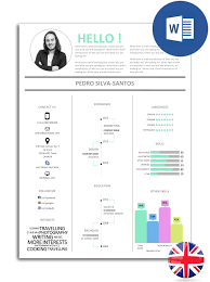 The Best Easy To Edit Infographic Resume Model In Word Noctula Store