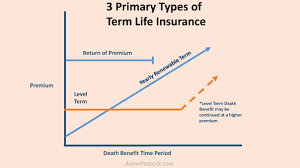 renewable term life insurance definition insurance quotes and source yearly renewable term yrt has premiums that