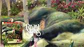 <b>Rival Sons</b> - <b>Feral</b> Roots (Full Album) - YouTube