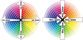 Why Do We See Colours The Way We Do  TelegraphEmotional Colours