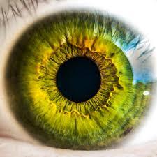 Magie Zelených Oči Proč Jsou Lidé Se Zelenýma Očima Tolik Unikátní