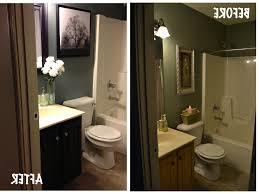 apartment bathroom decor. Plain Decor Cabinet Elegant Bathroom Decor Ideas  For Apartment N