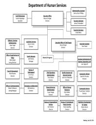 Dhs Org Chart Fillable Online Michigan Dhs Organizational Chart Michigan