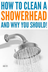 how to clean a shower head the right way one third of shower heads