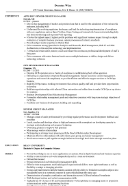 Senior Group Manager Resume Samples Velvet Jobs