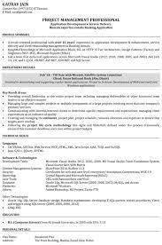 Resume Examples Example Software Engineer Resume Free Software