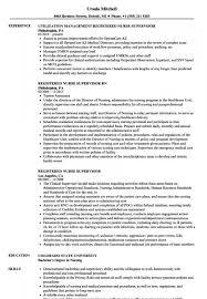 Sample Resume For Nurse Supervisor Position