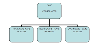 Organisational Structure Icrit Healthcare