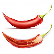 pot of chili drawing. Fine Drawing Hot Chili Pepper Whole And Half Isolated On Background And Pot Of Chili Drawing F