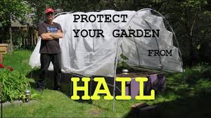 protect your garden from a calgary hail storm diy instructions to make a hail shield