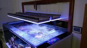 reef tank led light uk