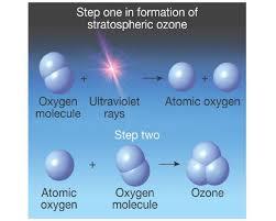 cover letter ozone layer essay ozone layer essay in telugu essay cover letter essay ozone layerozone layer essay