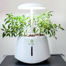 indoor garden kits. Free Herb Garden Kits At Peaceful Design Ideas Indoor Gardening Charming About Vegetable