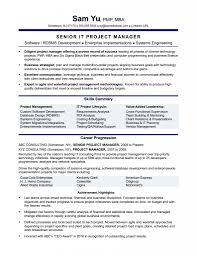 Business Development Manager Resume Resume Templates Business Development Manager Example Sample 60