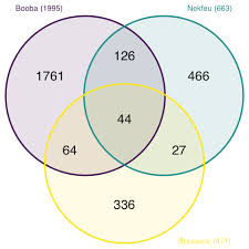 Create A Venn Diagram From Data Venn Diagram From Data To Viz