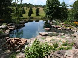 natural looking in ground pools. Infinity Edge Pool Ideas-19-1 Kindesign Natural Looking In Ground Pools A