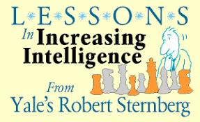 Sternberg Intelligence Bottom Line Personal Increasing Intelligence Robert Sternberg