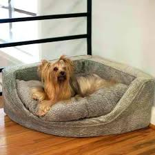 luxury dog bed furniture. Luxury Dog Bed Beds Unique Mattress Pet Furniture Uk Couches U S Crates .  Crate Plans T