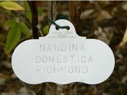 garden labels. Professional Aluminium Plant Tags Garden Labels R