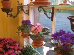 Kitchen Window Shelf Steps To A Window Garden