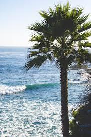 ocean tumblr vertical. Sea Blue Tree Beach IPhone 5 Wallpaper Tumblr Elegant Ocean Vertical A